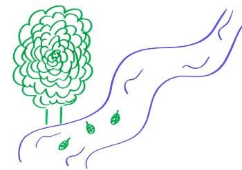 Übung Blätter im Fluss zur achtsamen Wahrnehmung von Gedanken